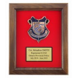 Walnut Finished Plaque with Red Flocked Background