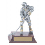 Male or Female Skater Hockey Trophy