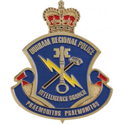 Durham Regional Intelligence Branch Crest